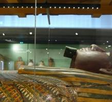 Egypt Gallery, Ashmolean Museum, Oxford